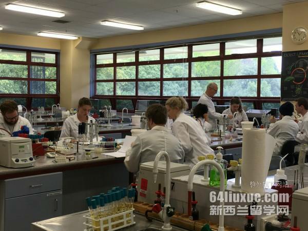 新西兰研究生申请流程