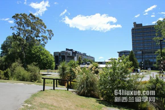 新西兰大学物理专业
