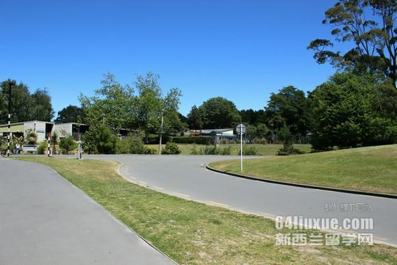 在新西兰留学如何打工