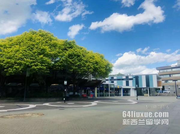 新西兰大学会计学排名