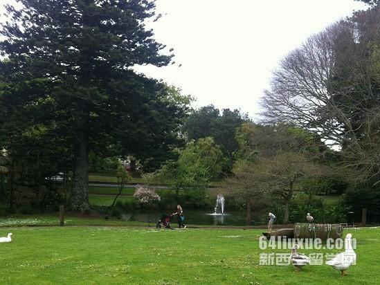 新西兰高中毕业留学