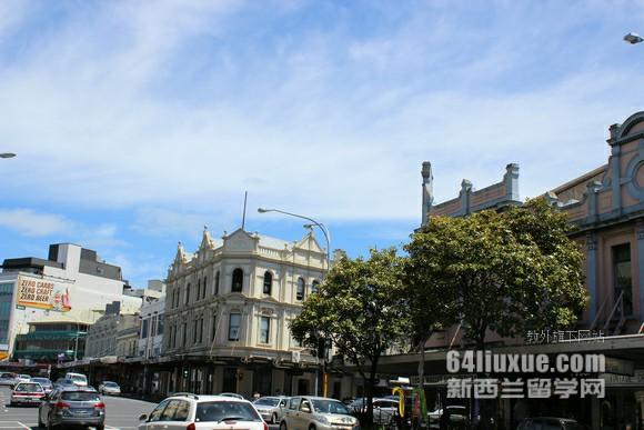 新西兰大学ee专业排名