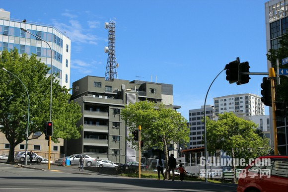 新西兰homestay价格