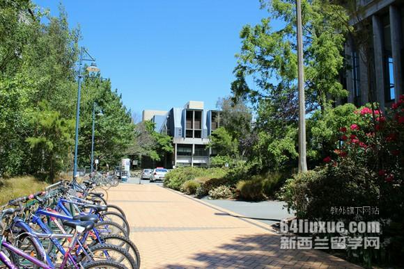 新西兰怀卡托大学预科课程安排