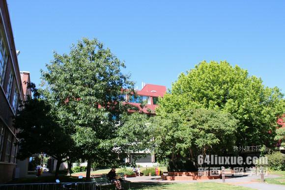 新西兰大学分布