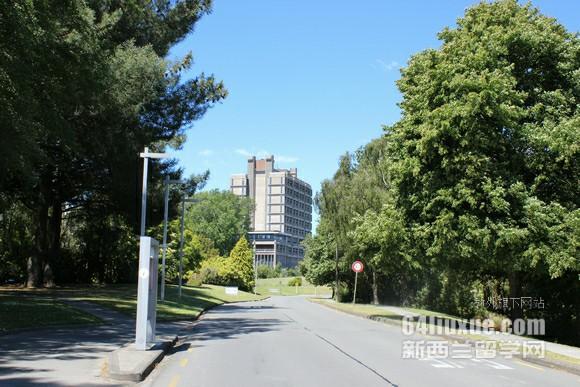新西兰基督城林肯大学