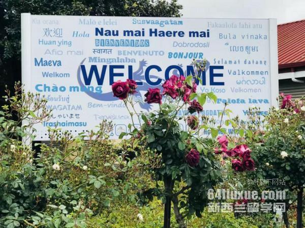 新西兰留学幼儿园