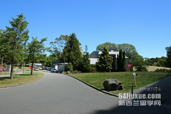 新西兰传媒专业前景