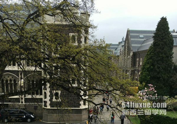 新西兰奥克兰大学学科设置
