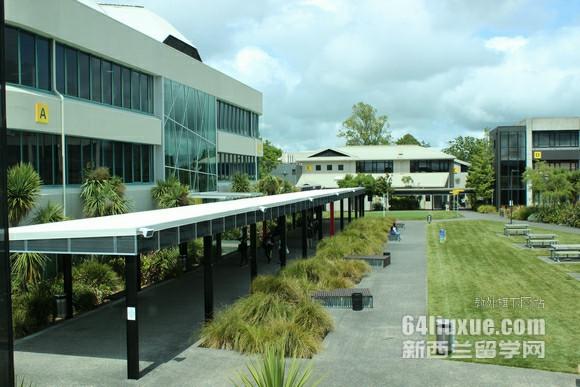 新西兰梅西大学专业设置