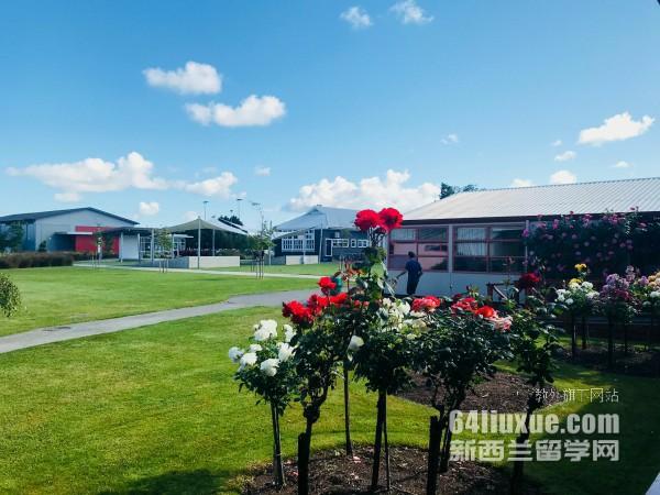 新西兰南方理工酒店管理gd课程