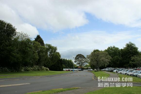 新西兰梅西大学有几个校区