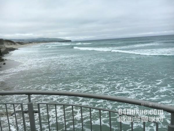 新西兰留学怎么租房
