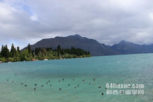 在新西兰留学费用多少一年