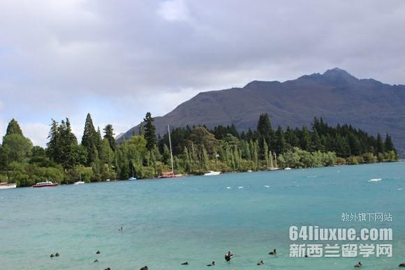 去新西兰留学需要多少保证金