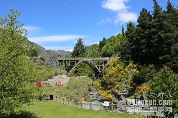 新西兰承认高考成绩的学校