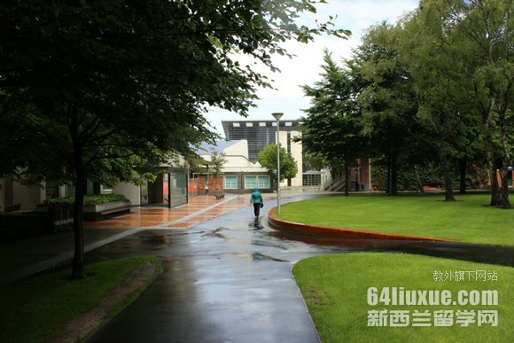 奥塔哥大学专业排行