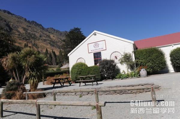 新西兰达尼丁的小学