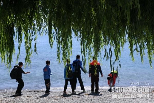 新西兰留学生打工收入