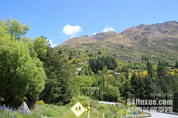 去新西兰留学一年费用多少钱
