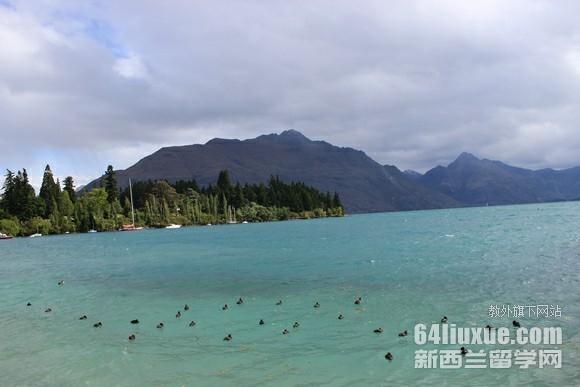 高中去新西兰大学留学