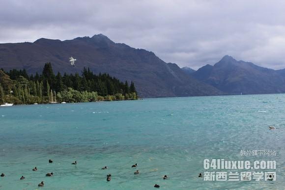 新西兰留学雅思不够
