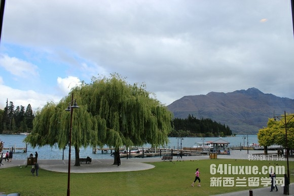 本科新西兰留学费用多少