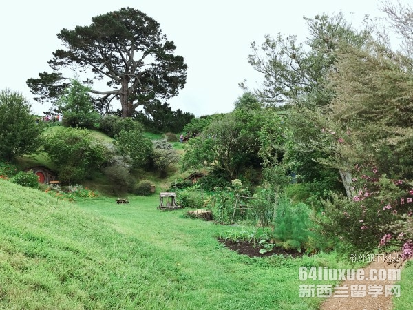 园艺专业留学新西兰