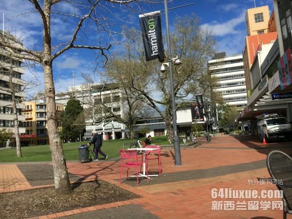 新西兰大学有什么好的专业