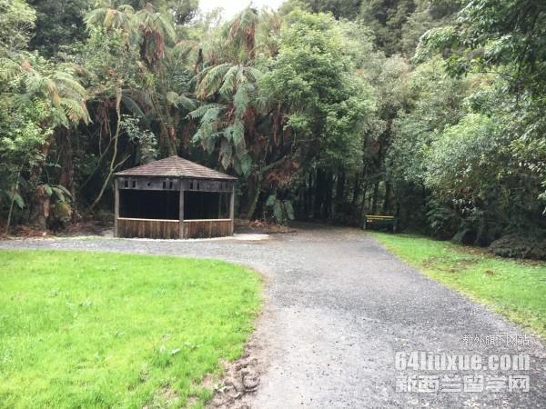 留学生在新西兰安全吗