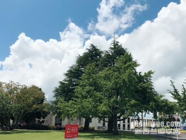 新西兰怀卡托大学如何