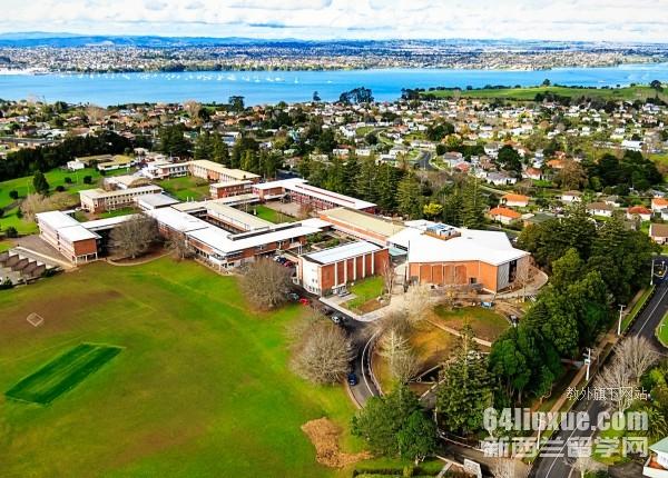 2020新西兰上小学条件