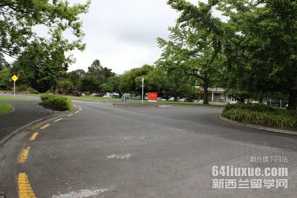 新西兰怀卡托大学有分校吗