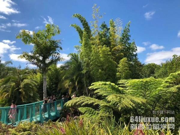 新西兰电工留学