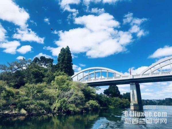 新西兰本科留学一年的费用
