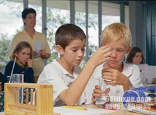 新西兰上小学费用