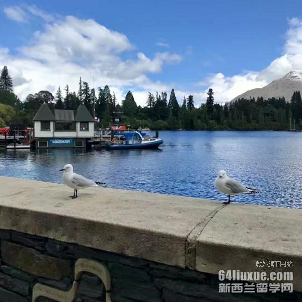 新西兰出国留学流程