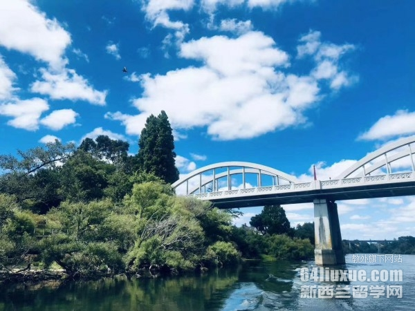 去新西兰留学一年多少钱