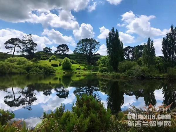 高考完想出国新西兰留学条件