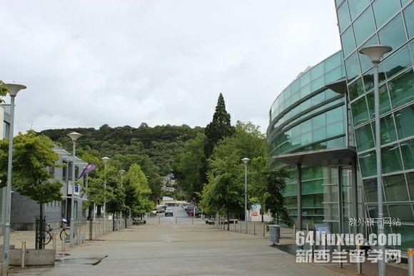 新西兰奥塔哥大学健康科学专业留学费用
