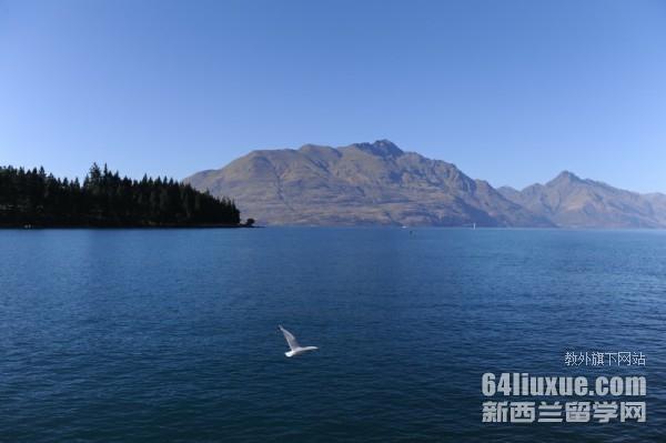 高三完成去新西兰留学