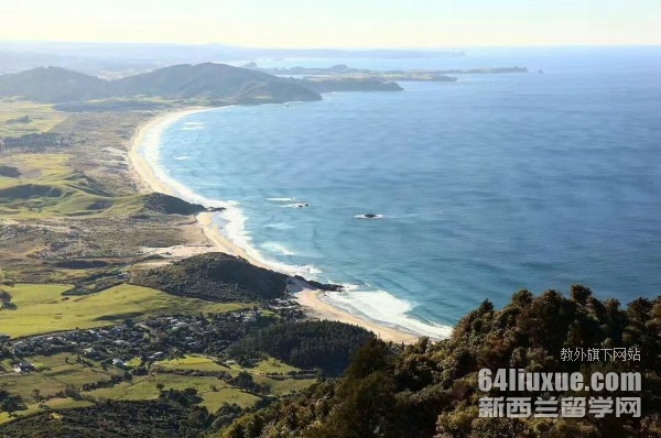 专科想去新西兰留学