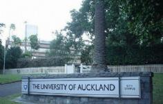怎么申请新西兰奥克兰大学留学