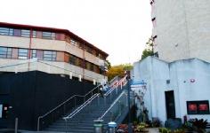 新西兰大学优势专业